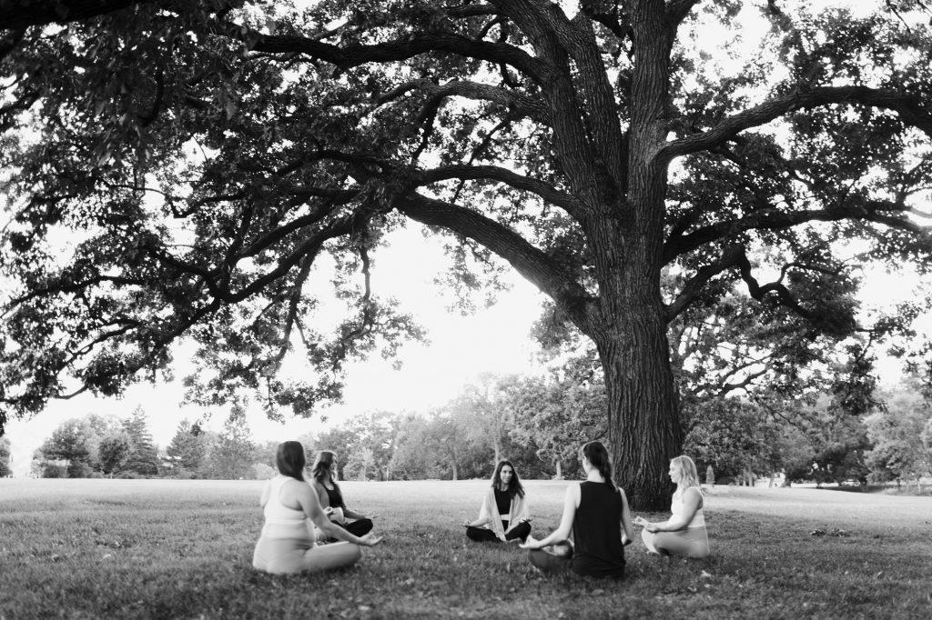 Oak Tree Meditation