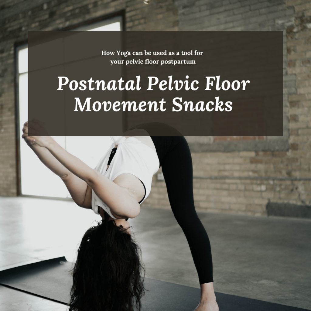 Postnatal Pelvic Floor